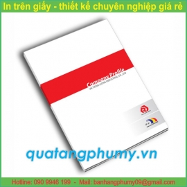 Mẫu in Folder IF17