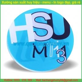 Huy hiệu nhựa HN24