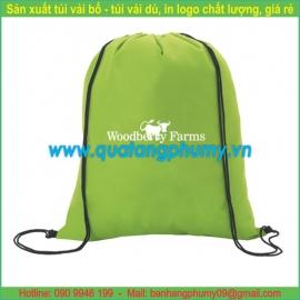 Túi vải dù TDU25